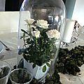 Décoration de table blanche et verte
