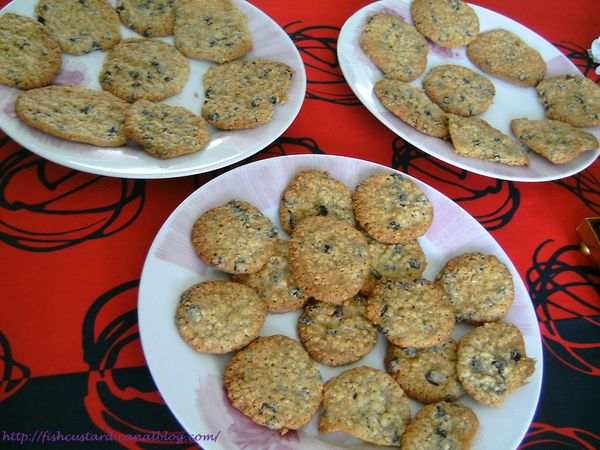 Cookies avoine-raisins (3)