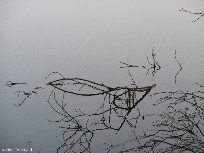 1-Balade au Lac 200219