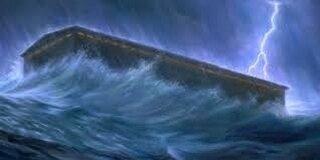Noah-Déluge, caisse ballotée