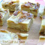 tortilla au four (scrap1)