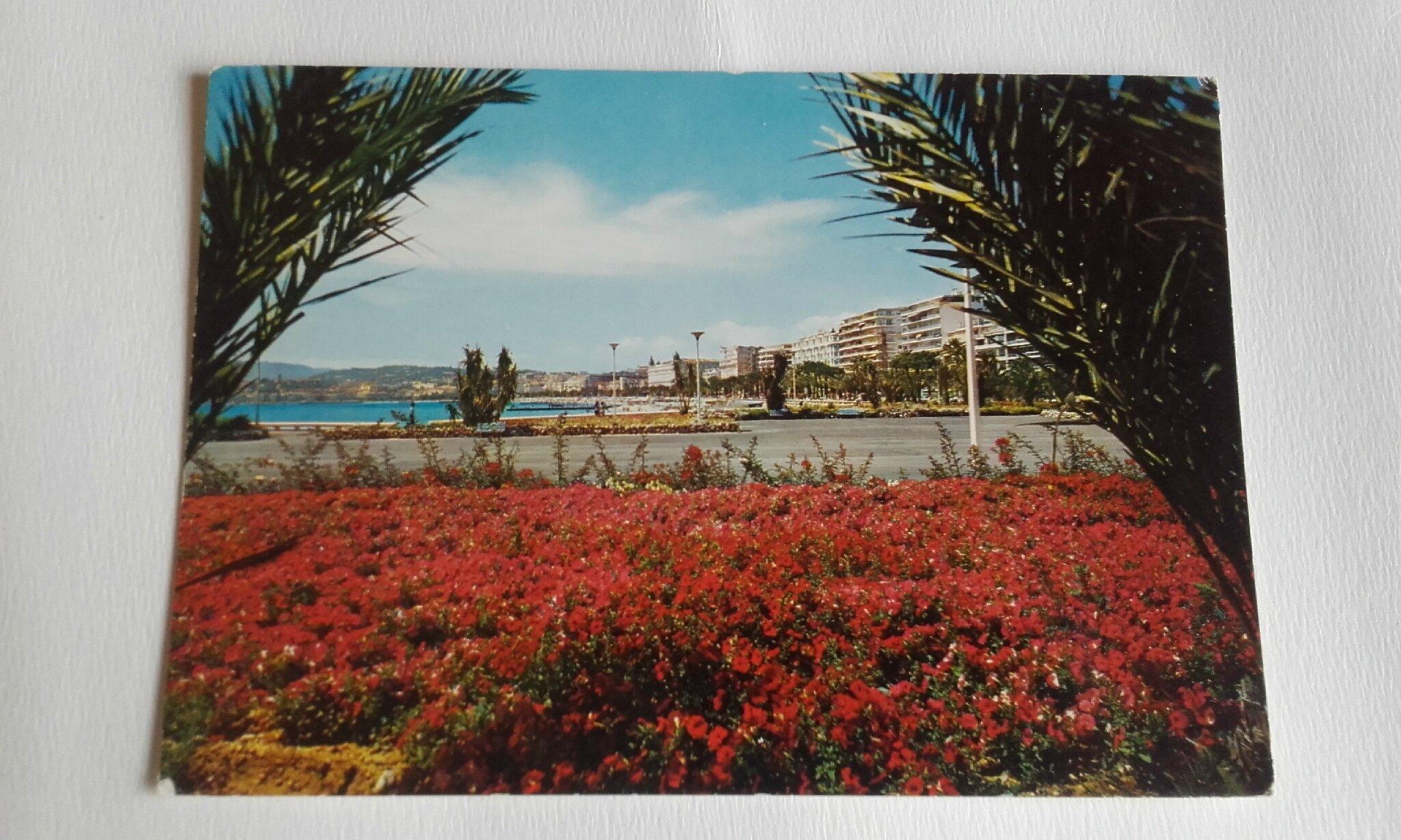 Cannes 1 Port Canto datée 1970