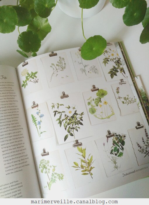 Botanical style - selina Lake - blog marimerveille10