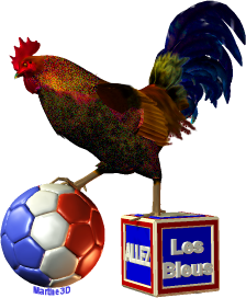 018-logo-mondial-football-2014-ballon-coq-rooster-allez-France