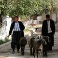 photo OUZBEKISTAN octobre 2006 109 - Copie