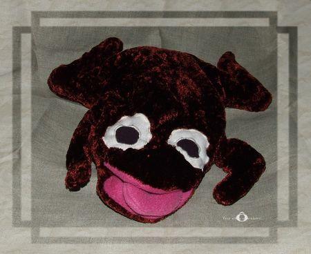 grenouille0113