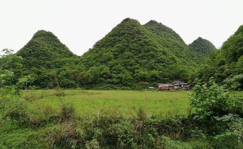 Réserve de Maolan_Guizhou_Chine2018_XRu_6