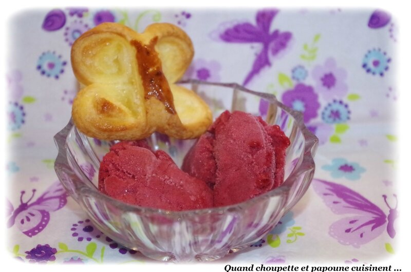 sorbet aux fruits rouges-740