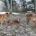 2009 03 11 Kapy au centre son père a gauche et sa mère a droite