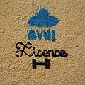 cdv_20140501_21_streetart_licenceH