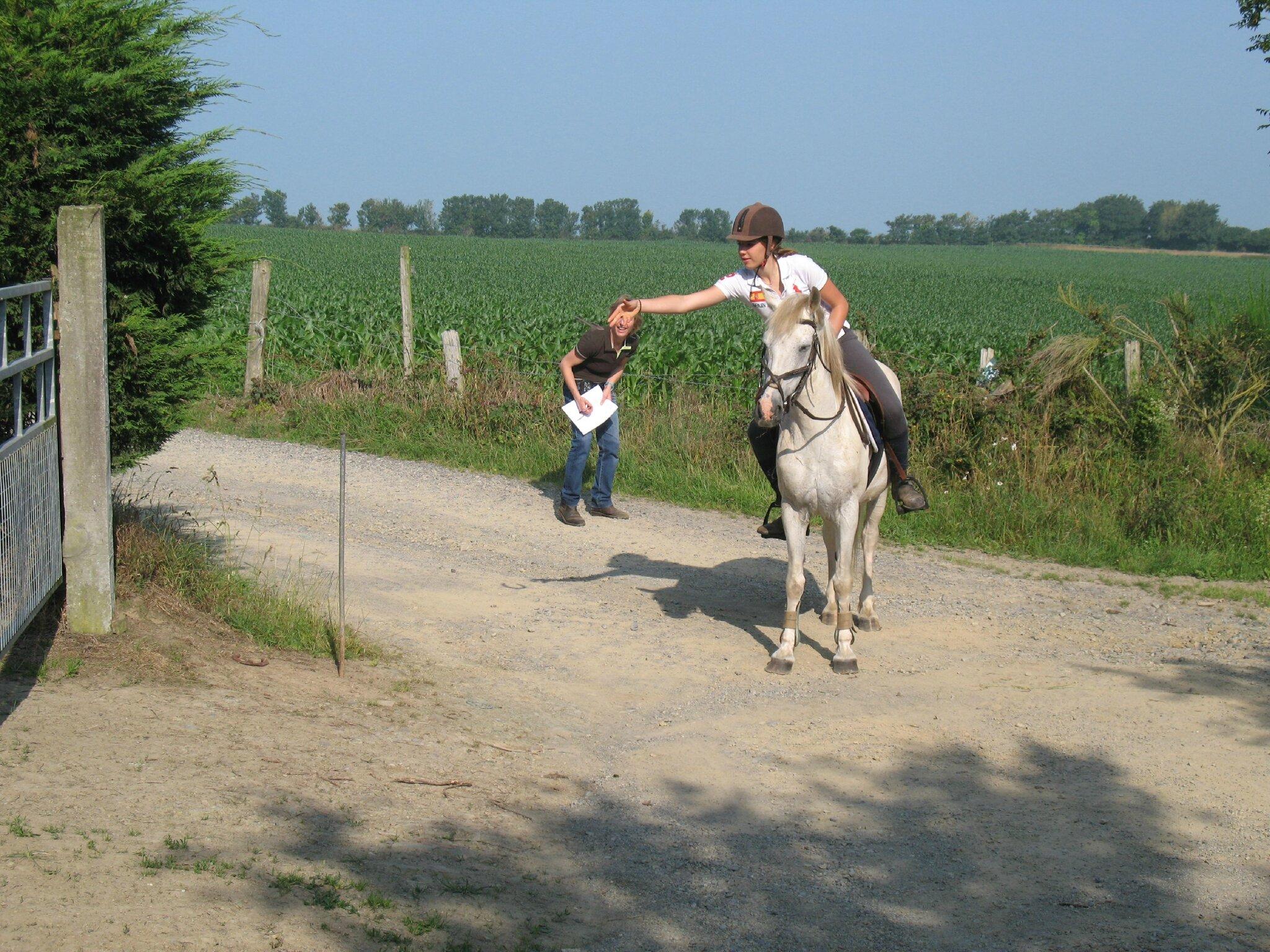 jeu du fer à cheval (19)
