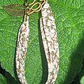 2010 bracelts 018