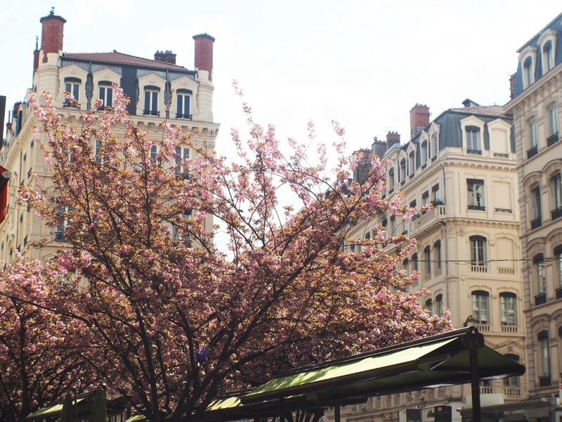 4-lyon-ma-rue-bric-a-brac