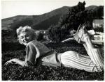 1954-PalmSprings-HarryCrocker_home-by_ted_baron-blouse-015-1