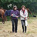 équitation d'extérieur - parcours en terrain varié (38)