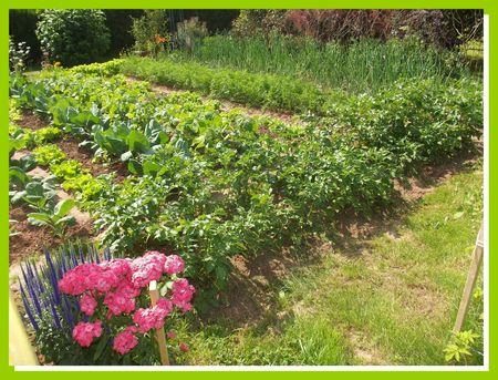DSCF5267 jardin