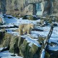Bremerhaven Zoo am Meer