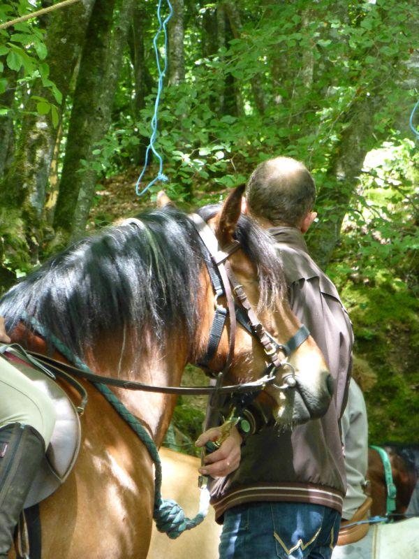 balade equestre gastronomique à La Lucerne d'Outremer (114)