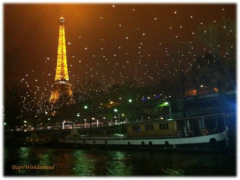 Message_11_11NOVEMBRE_01_Paris_by_night_Tour_Eiffel_&_bateau_mouche