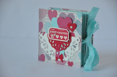 MINI ALBUM PLIE 2013 4