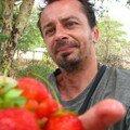 27/03/08 Totos ramene sa fraise