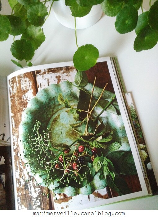 Botanical style - selina Lake - blog marimerveille9