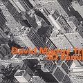 11 - David Murray - 3 D family