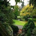 medium_jardin_des_plantes_oct02_-_copie