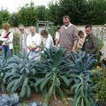Jardin potager Catherine Labouré