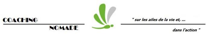 Logo pour hello asso1
