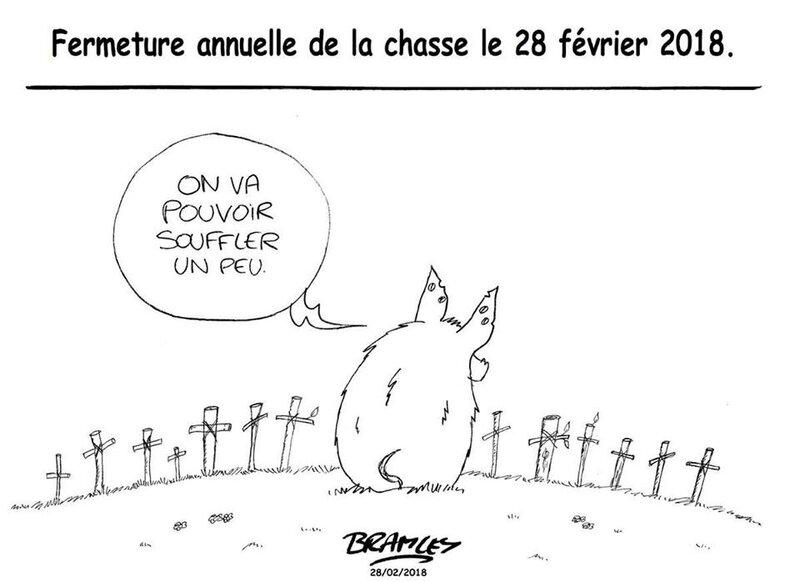 animaux_chasse_147