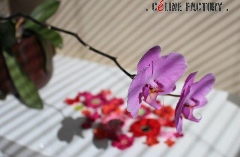 Fleurs chapO 2