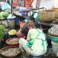 Au marché central... toujours à Phnom Penh