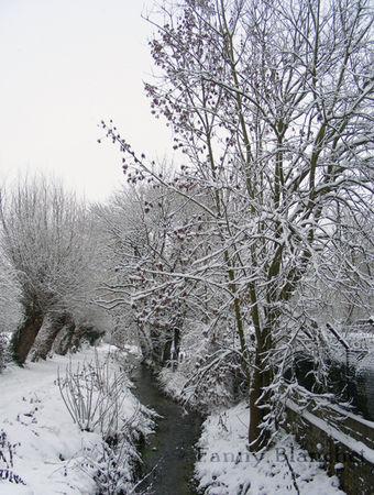 neige19dec8
