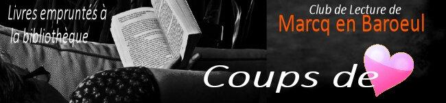 banniere coups de cour