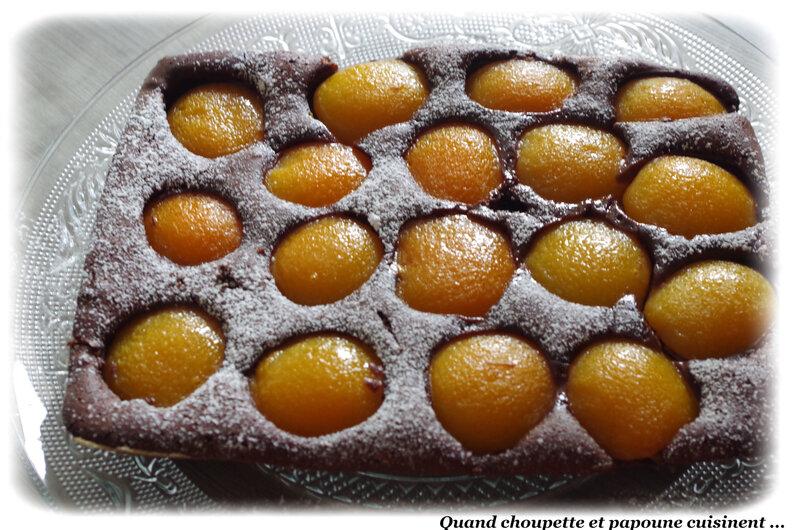 gâteau au chocolat et à l'abricot-0199