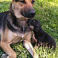 Neda et sa petite Nala