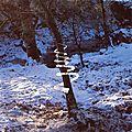 LAND ART_Andy Goldsworthy (spirale de glace reconstituée)