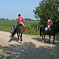 jeu du fer à cheval (30)