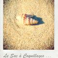 Le nouveau it-bag de la plage ... baby version rock