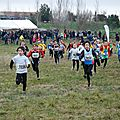 cross Cruscades 2013
