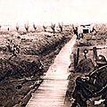 1919-05-29 Tombe couronnée