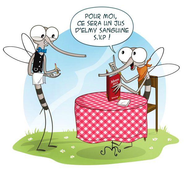 moustique2-BD