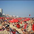 Crèmes solaires et pollution !...
