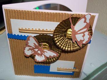 Challenge 13 Carte de papillonage