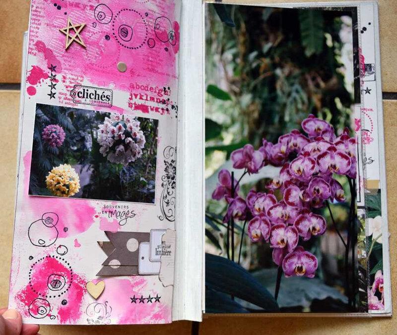 Orchidées-10