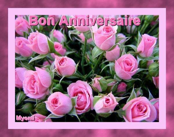 anniv bon roses rosesMariage Virginie et Matt 19