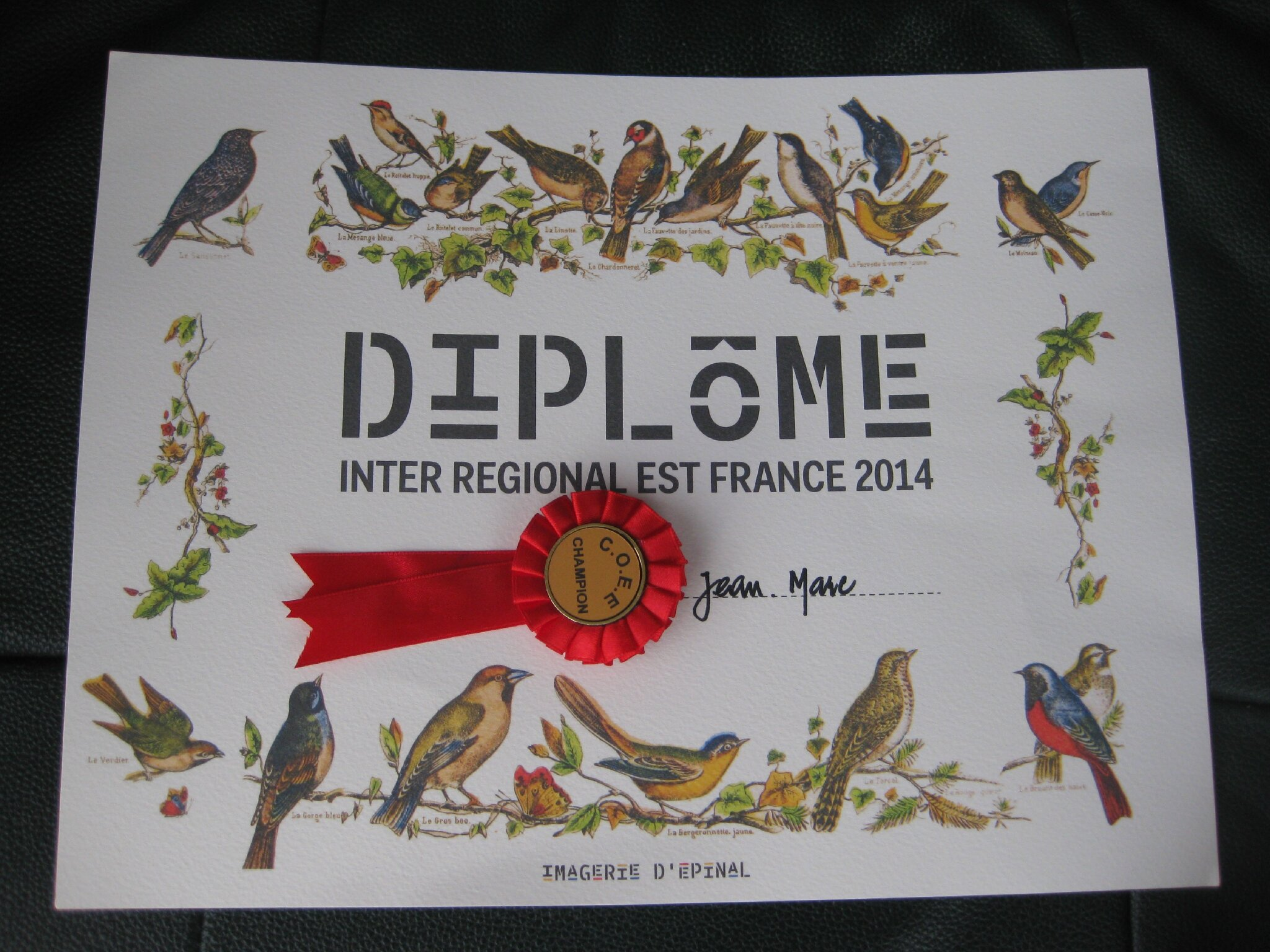 CONCOURS EPINAL DIPLOME 2