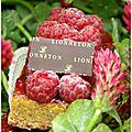 Lionneton