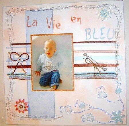 la_vie_en_bleu